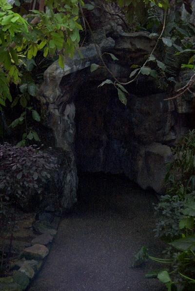 Vampire Caves
