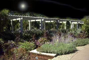 Chadich Gardens